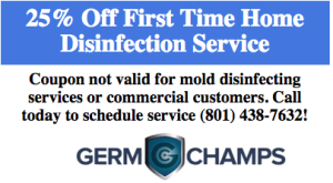 Complete Home Disinfection Service